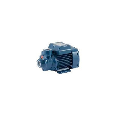 SURFACE WATER PUMP PEDROLLO - PKm 60 - 220V